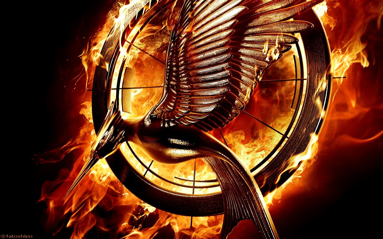 Watch The Hunger Games: Catching Fire online at Movie4k